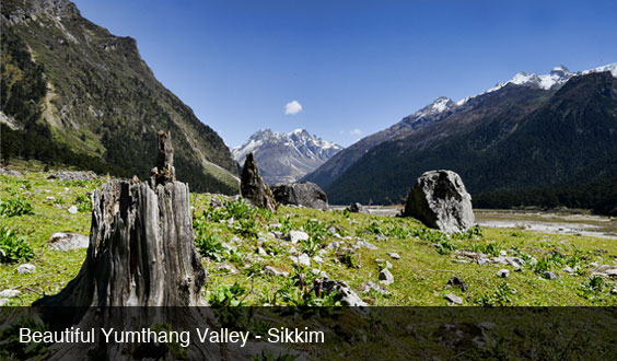 sikkim-denzong-yumthang-valley-